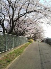 植田誠(うえはまだ) 公式ブログ/木 ツ 女。 画像1