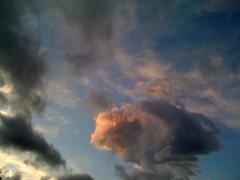 青樹伸 公式ブログ/なつやすみ。。2 画像1