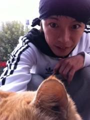 のぶ 公式ブログ/今日のネコさん。。 画像1