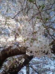 トリックマスターソラ バイオレット 公式ブログ/東日本大震災被災地支援 南三陸町 「応援」 画像2
