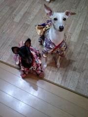 トリックマスターソラ バイオレット 公式ブログ/soraから いろいろありがとう 画像3