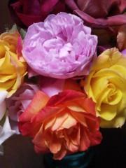 トリックマスターソラ バイオレット 公式ブログ/東北6県支援公演 愛に会いに 画像2