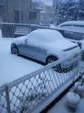 トリックマスターソラ バイオレット 公式ブログ/雪 関東 わんこも跳ねるね 画像1