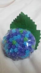 片岡あづさ 公式ブログ/紫陽花の季節 画像1