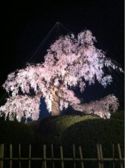 野田将人 公式ブログ/久しぶりの 画像2