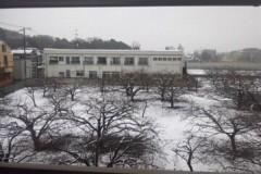 ニキータ草山 プライベート画像 部屋から見る雪景色