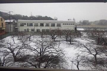 部屋から見る雪景色