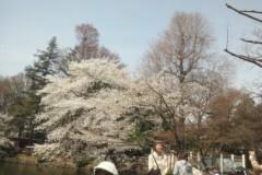 ニキータ草山 公式ブログ/全身が、全身が! 画像2