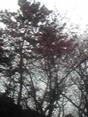 石堂優紀 公式ブログ/暇なので。 画像2