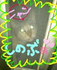 石堂優紀 公式ブログ/グラサン 画像1
