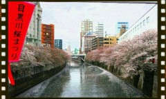 イワイガワ 公式ブログ/桃色の御裾分け 画像1
