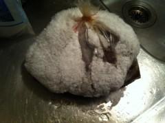 オーバービークル 公式ブログ/我が家の冷凍庫 画像1