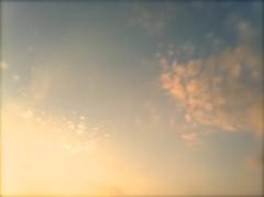 オーバービークル 公式ブログ/初の試み 画像1