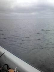 オーバービークル 公式ブログ/海へ 画像1