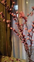川崎渓都 公式ブログ/超かわいい 画像1