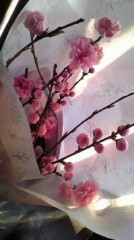 川崎渓都 公式ブログ/桃色 画像1