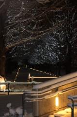 菱刈健人 公式ブログ/メ〜テレ50周年特別番組:名古屋行き最終電車 画像3