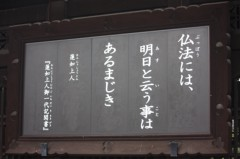 菱刈健人 プライベート画像/〜旅の記録〜 ?6 俳句?