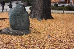 菱刈健人 プライベート画像 永保寺の紅葉<2>