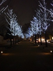 菱刈健人 公式ブログ/雪、降る中、歩いた夜道… 画像1