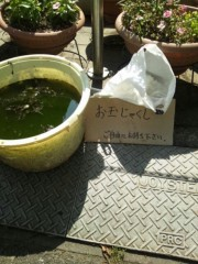 辻昌子 公式ブログ/ご自由にお持ちください 画像1