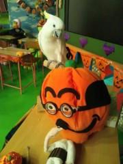 辻昌子 公式ブログ/ハロウィンの飾り付け 画像1