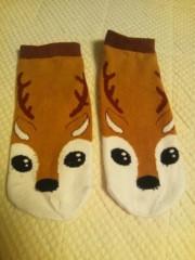 辻昌子 公式ブログ/奈良の鹿! 画像1