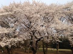 辻昌子 公式ブログ/子供たちと砧公園へ! 画像1