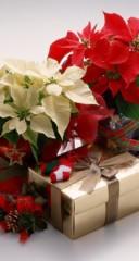辻昌子 公式ブログ/もうすぐクリスマス! 画像1