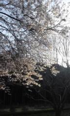 Asami(ナナカラット) 公式ブログ/黄昏時が 画像3