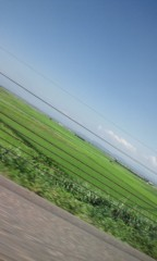Asami(ナナカラット) 公式ブログ/合唱中 画像1