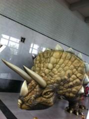 Asami(ナナカラット) 公式ブログ/トリケラトプスかな? 画像1
