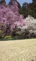 Asami(ナナカラット) 公式ブログ/大自然の中のライブは。 画像1