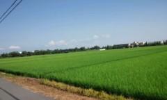 Asami(ナナカラット) 公式ブログ/あーした天気になぁれ(。ゝ∀・)ゞ 画像1