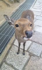 岡 梨紗子 公式ブログ/らぶれいんぼうっ 画像2