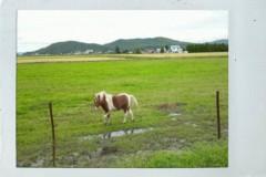 岡 梨紗子 公式ブログ/25キロ。 画像2