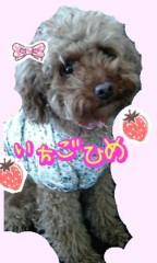 岡 梨紗子 公式ブログ/ます 画像1