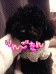 岡 梨紗子 公式ブログ/被災地への募金 画像1