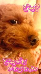 岡 梨紗子 公式ブログ/ぎゃほほほほ(°□°) 画像2