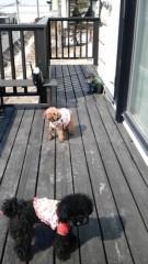 岡 梨紗子 公式ブログ/散歩ぽぽぽ 画像3