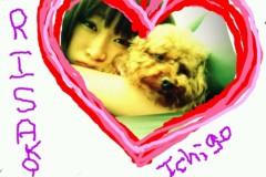 岡 梨紗子 公式ブログ/寝寝寝(・0・)! 画像1