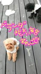 岡 梨紗子 公式ブログ/送ったよ 画像2