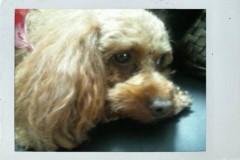 岡 梨紗子 公式ブログ/オフでけた。 画像1