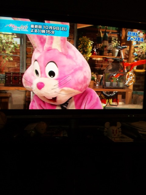11.10.08 テレビ?