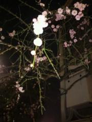 安部純奈 公式ブログ/春ですね 画像1