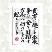 藤井悠矢 公式ブログ/決戦の日 画像3