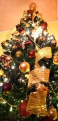 山咲トオル 公式ブログ/( ^-^)ノ∠※。.:*:・'°☆メリー・クリスマス。 画像1
