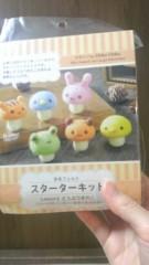 濱地恵 公式ブログ/『羊毛フェルト@はまち』 画像3
