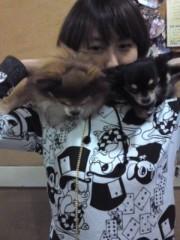 コジちゃん(ムシャムシャ) 公式ブログ/愛犬 画像1
