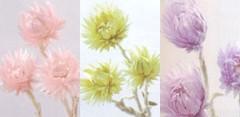 YUKA 公式ブログ/EAST SIDE TOKYO 画像1